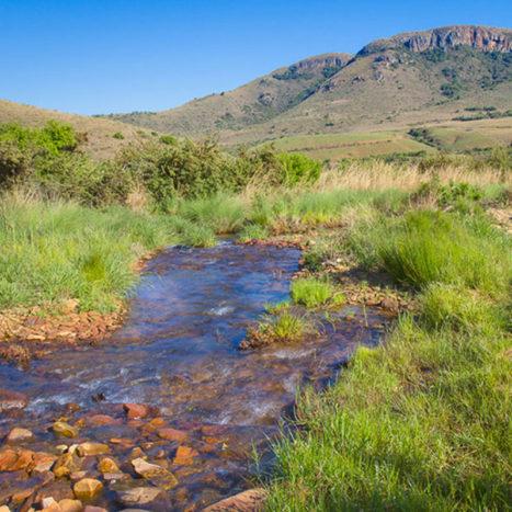 Highland-Run-Fly-fishing-Estate-Gras-Fields-Global-Travel-Alliance-SA