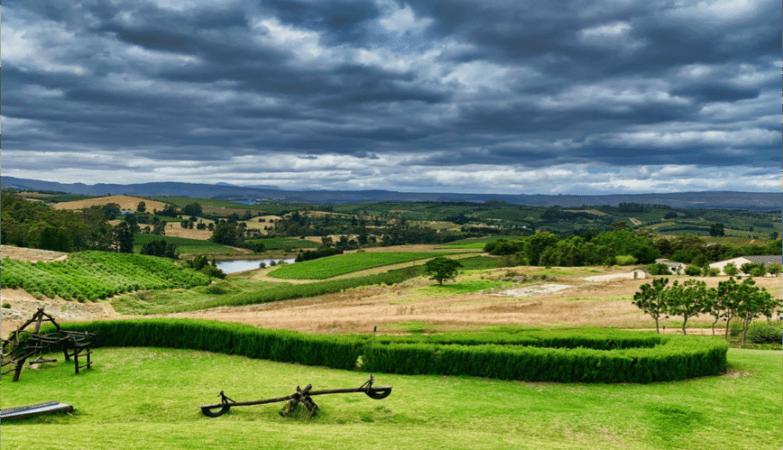 Almenkerk Wine Estate, South Africa