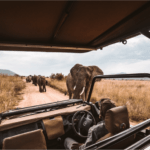 Winter Weekenders South Africa, Global Travel Alliance